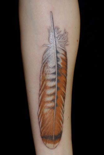 red tail hawk feather tattoo very cool especially since it is illegal to have a real feather unless you are na or licensed