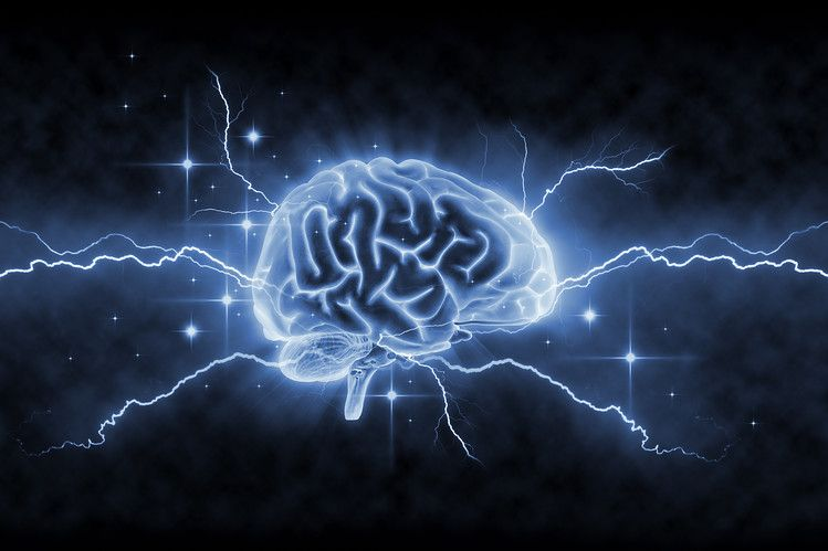 Our Amazingly Plastic Brains | Living Well with Huntington ...