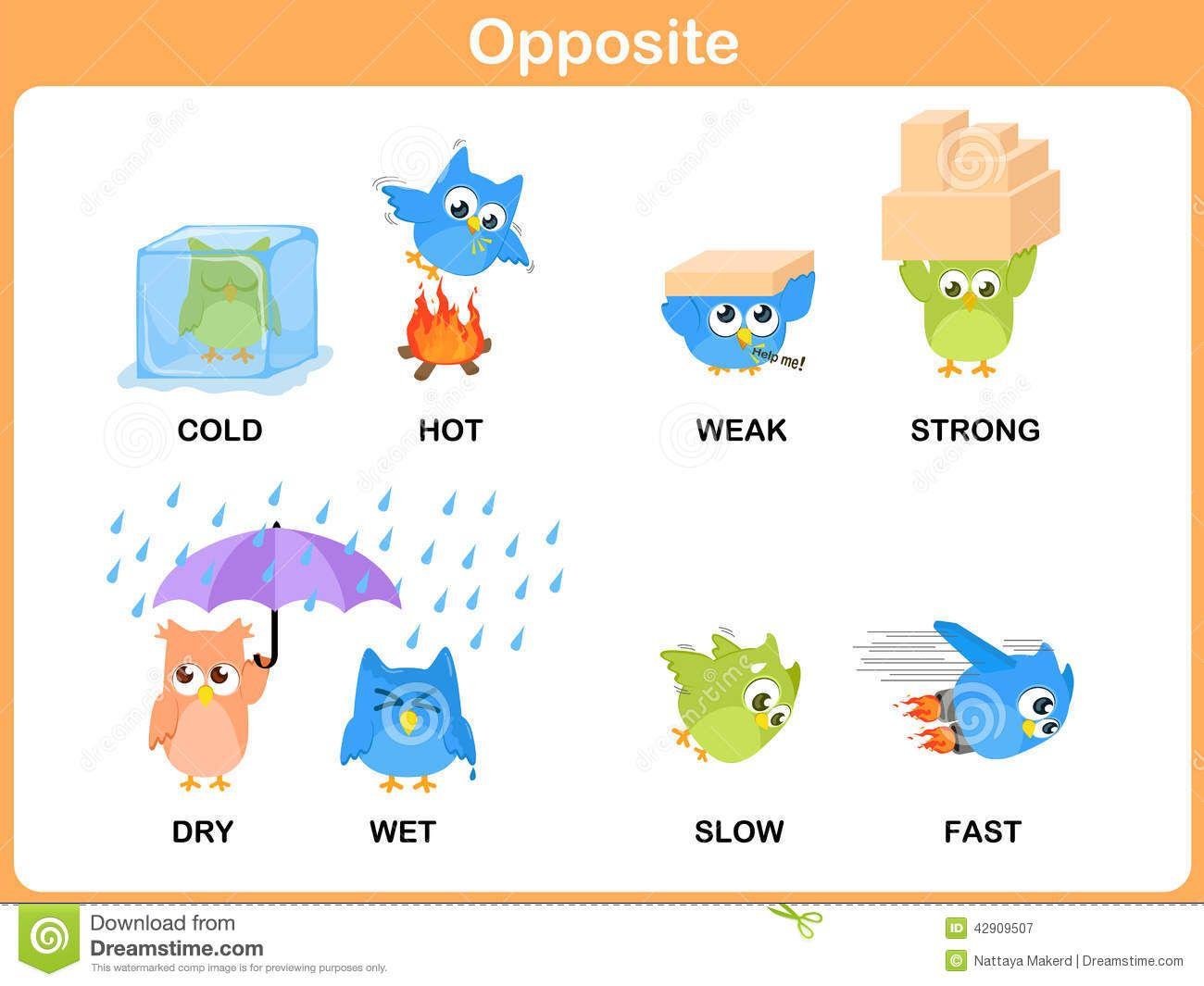 Opposite Words Opposite Words For Kids Preschool Themes [ 1065 x 1300 Pixel ]