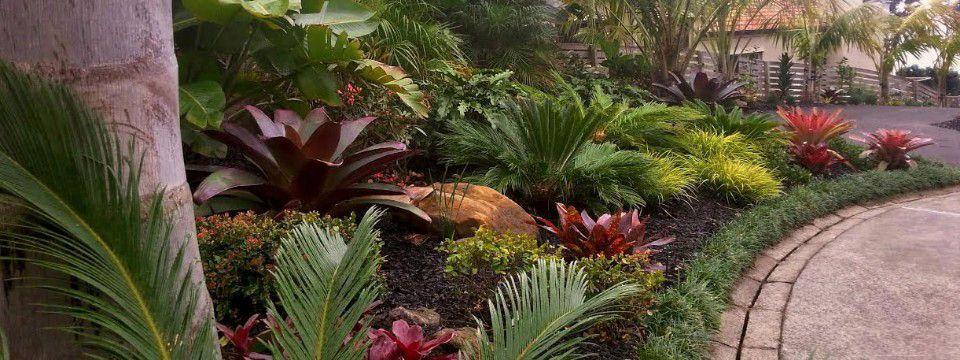 Nz Garden Design Photos Google Search Landscaping Pinterest