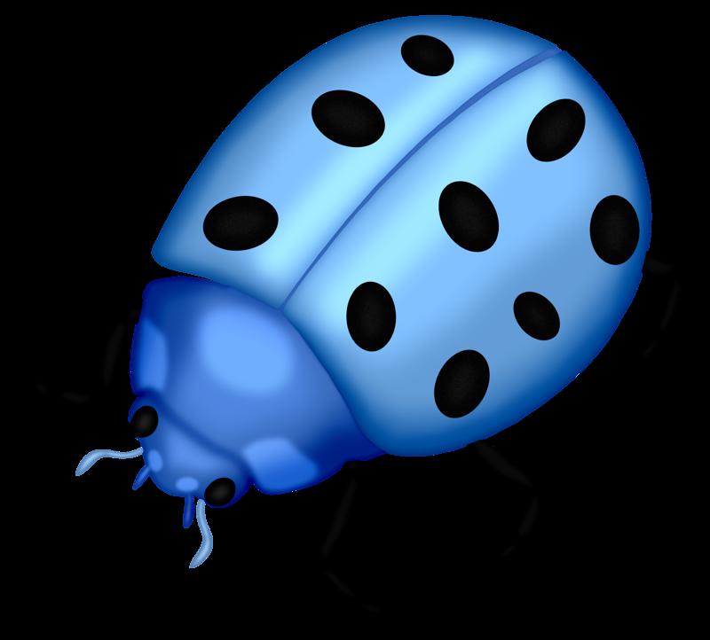 картинка синего жука помогает поддерживать