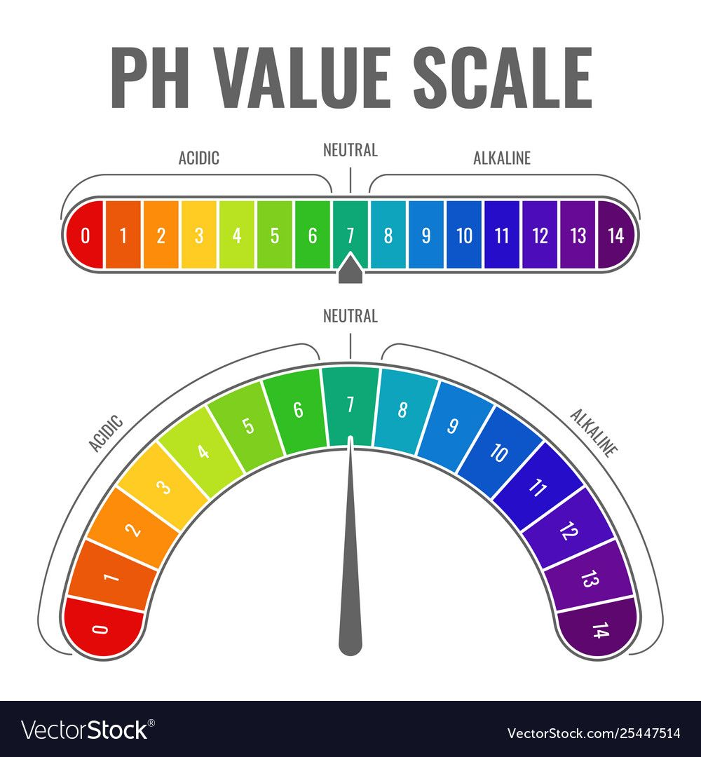 Ph Alkaline Acidic Scale Indicator Water Balance Vector Image