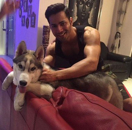 Salman Khan Dogs and other celebrity pets   Dogs, Dog angel, Pets