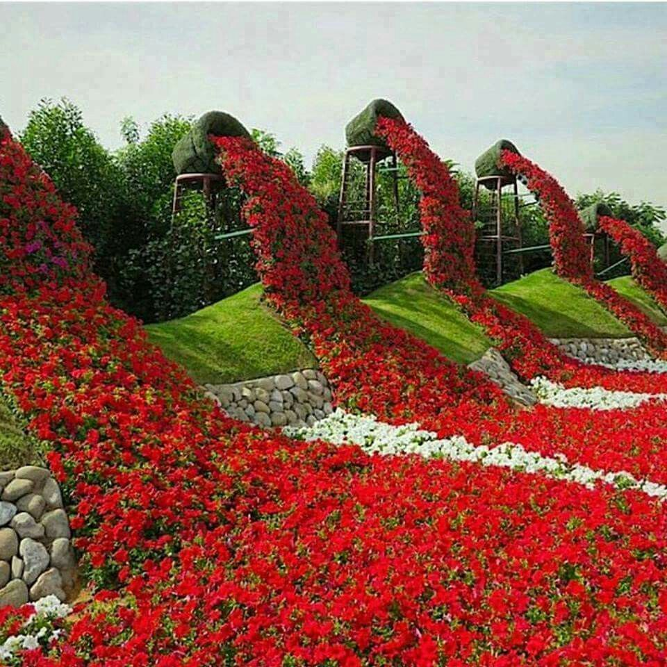 15 Amazing Spilling Flower Landscape Design Ideas: Miracle Garden,Dubai