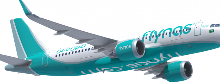 Flynas Flight Logo Png Google Search In 2021 Flight Logo Living Room Partition Design Room Partition Designs