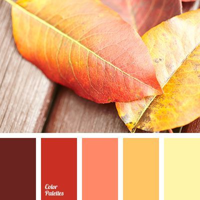 Bright Red Brown Color Burgundy Matching Fall Orange Pale Yellow Palette For Saffron