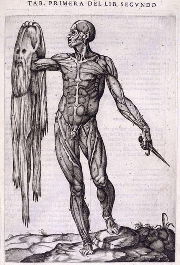 Gaspar Becerra - Flayed man holding his own skin | RENAISSANCE ...