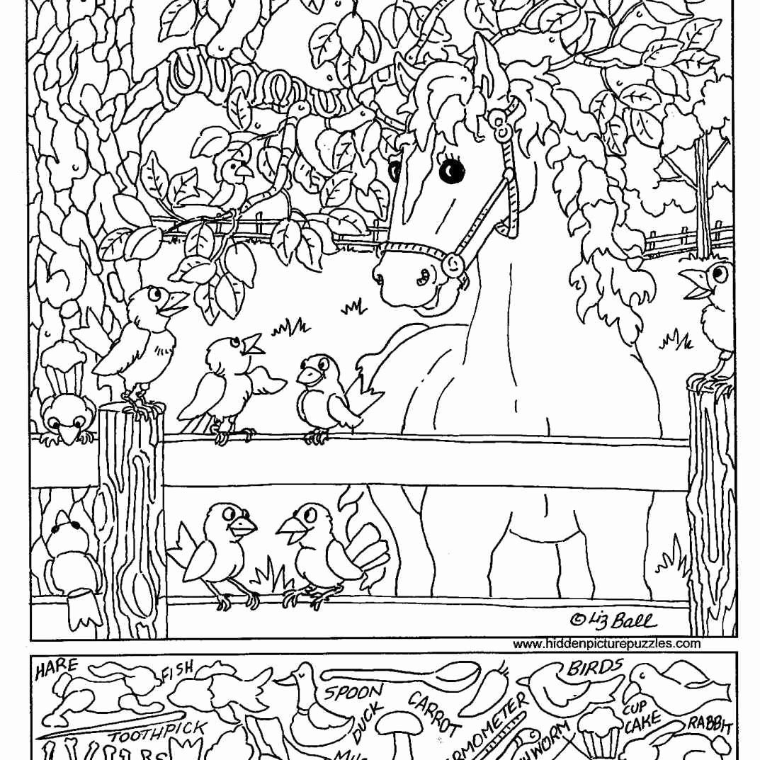 Camping Coloring Pages For Preschoolers Best Of Free