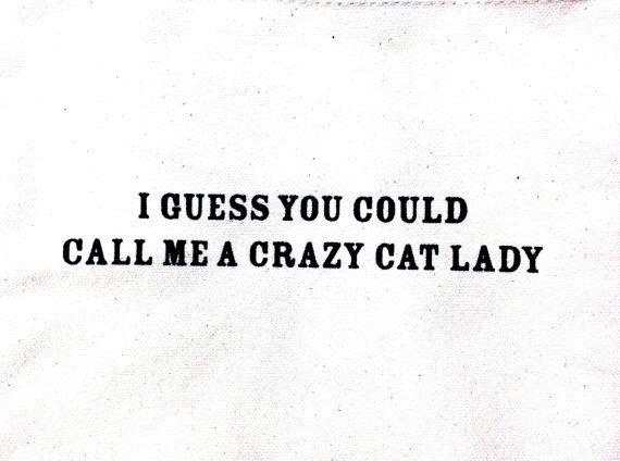 bolso de la señora loca de los gatos