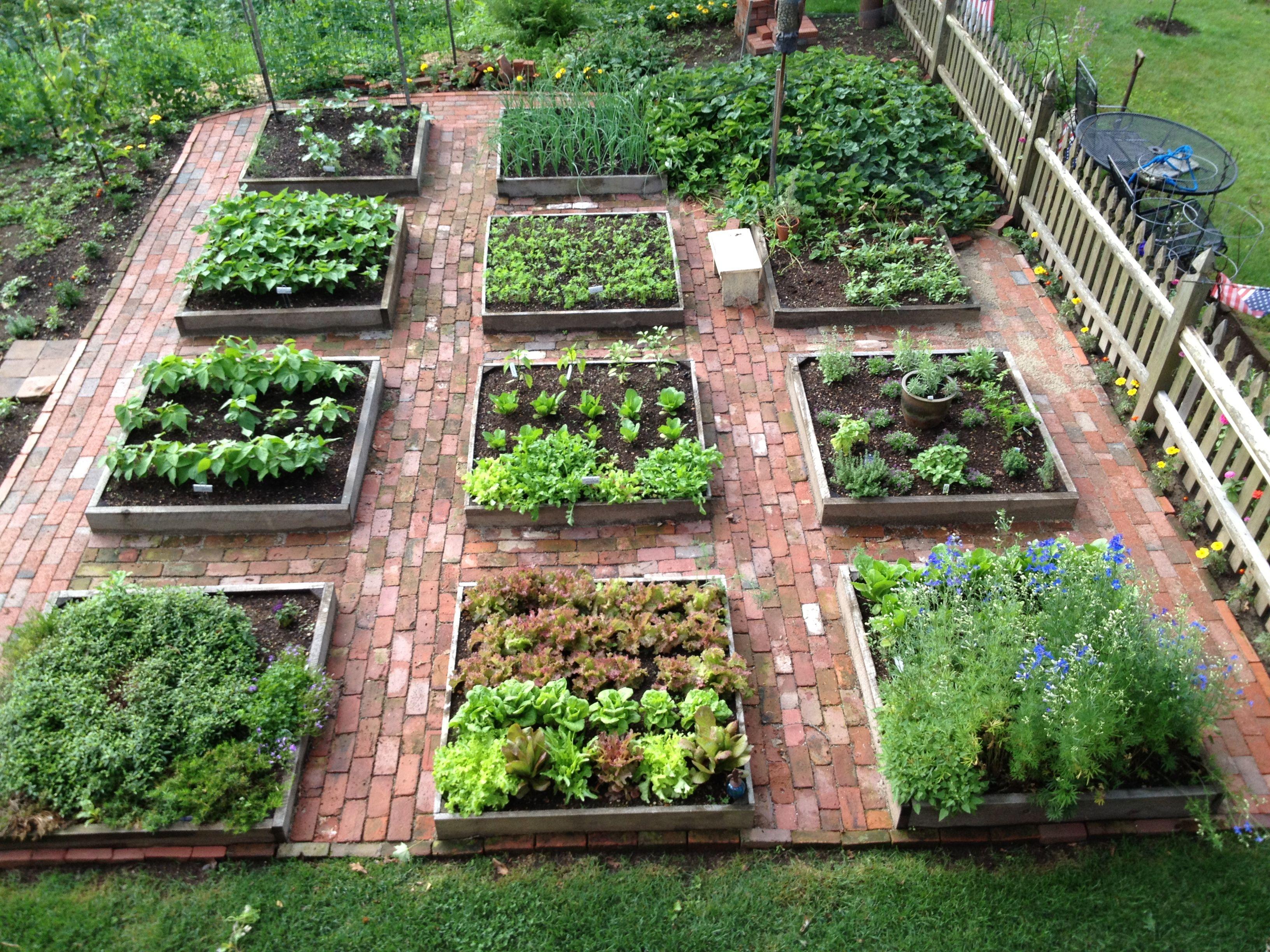 для дизайн огорода фото с посадками овощей двери закрыты
