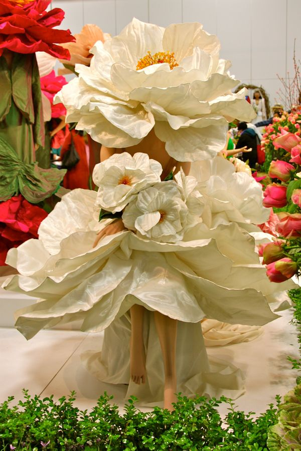 Tailored flowers at the royal adelaide show a photo essay my wow inspiration pinterest - Royal flower show ...