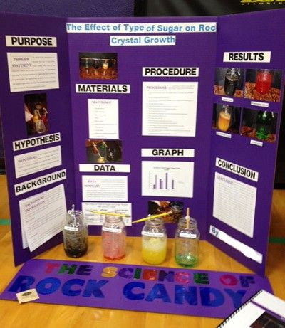 The Project Display Board Is A Key Part Of Science Fair Presentation