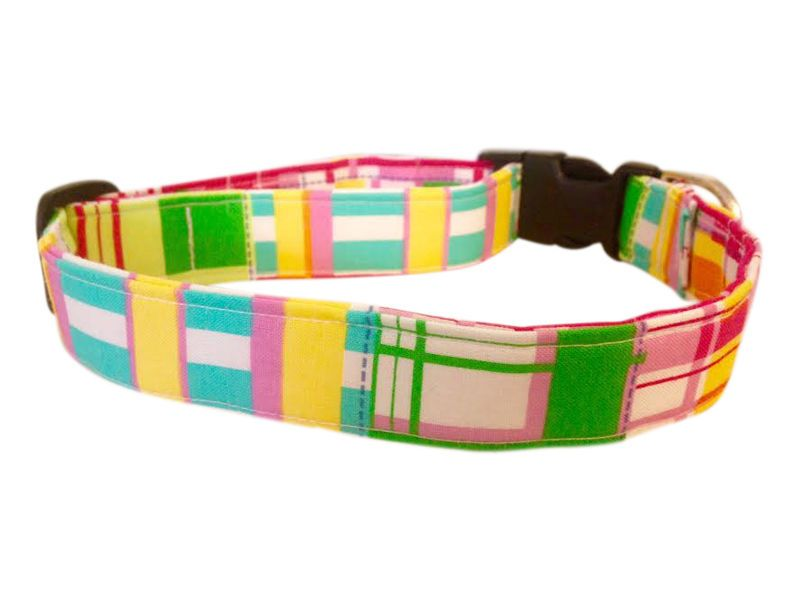 SPIFFY POOCHES Dog Collar Collars Puppy Pet GIRLY PREPPY PLAID XS SM MED LG XL  #SPIFFYPOOCHES