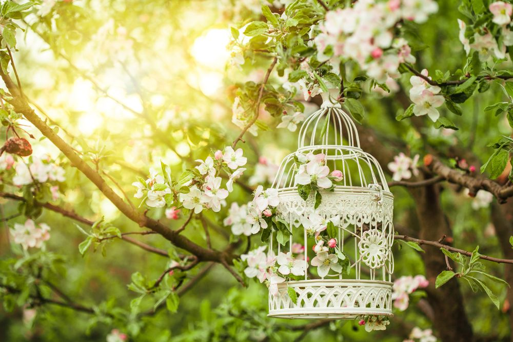DIY pretty garden decor DIY Pinterest Wedding, Bird cage and