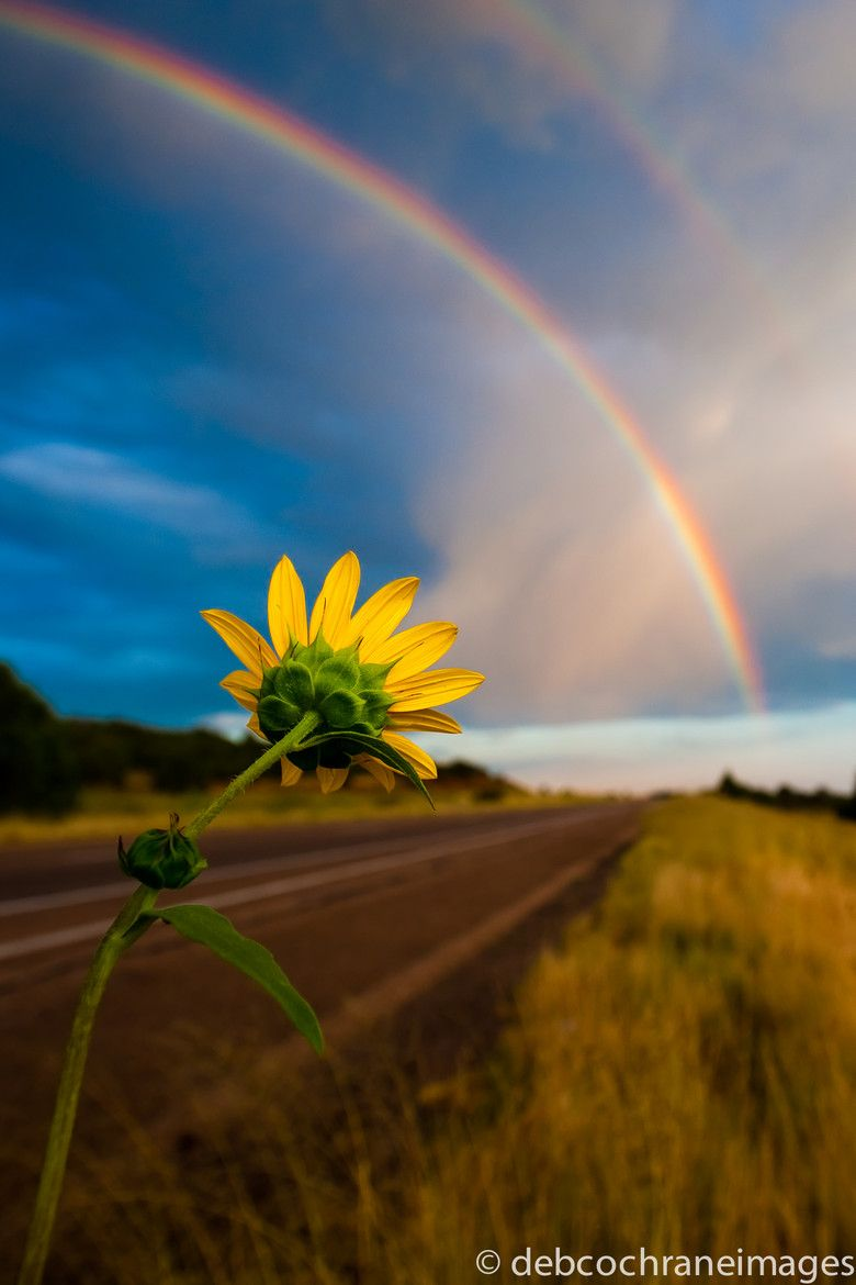 Positive Outlook Rainbow Pictures Beautiful Nature Rainbow Sky