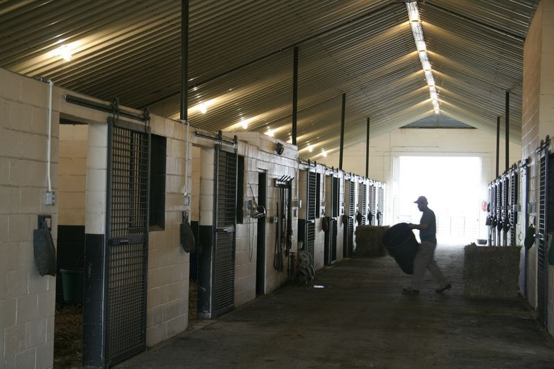 Concrete Horse Barn Great Idea And Fire Proof Easy To Clean Cooler During The Summer Stallen