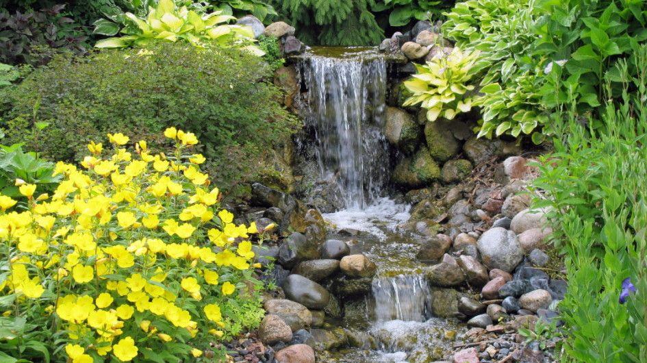 Designing Your Garden Markcastroco