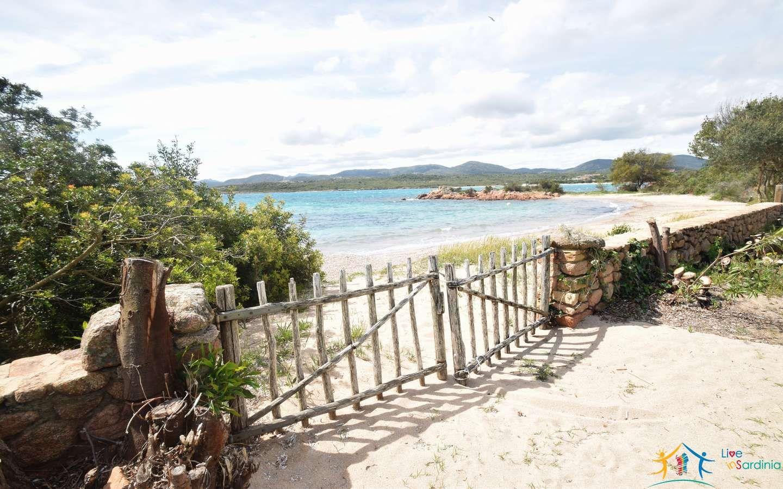 Beachfront Villas For Sale In Porto Istana Olbia San Teodoro Cala