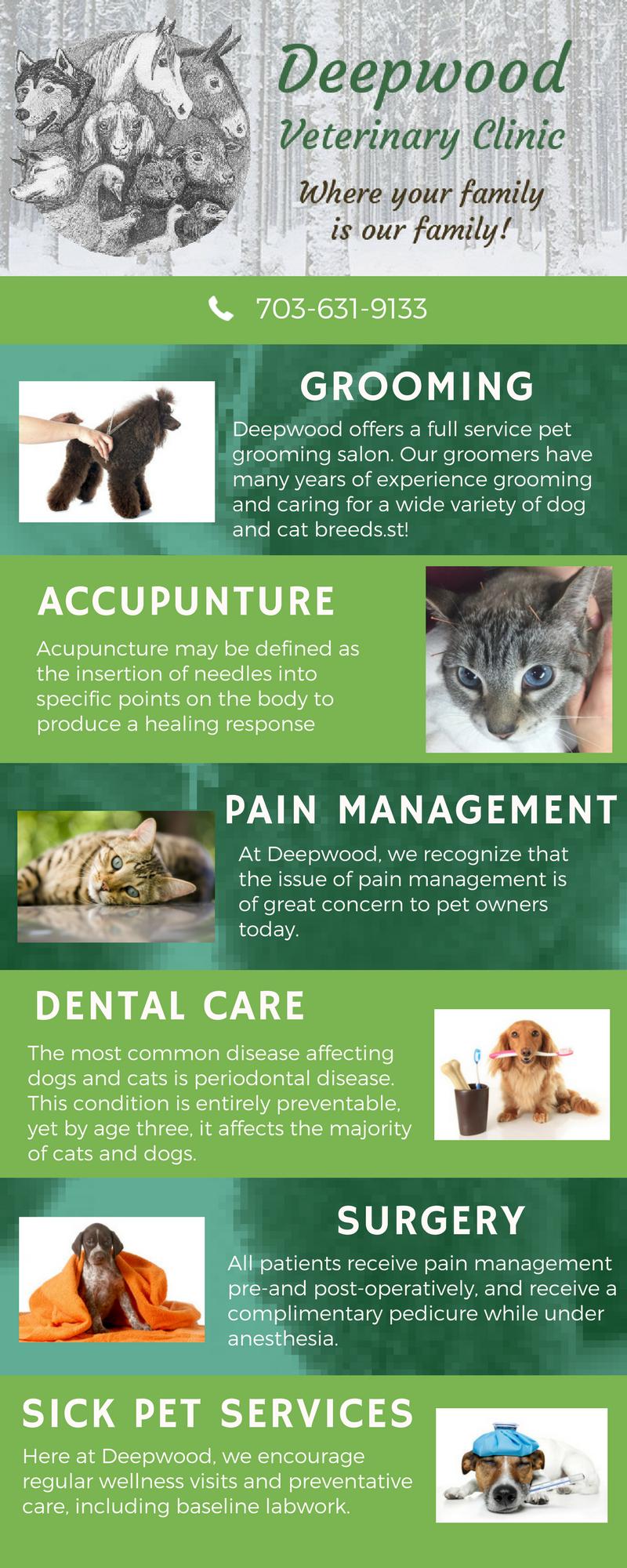 Pin On Deepwood Veterinary Clinic