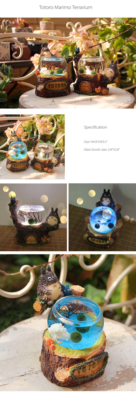 Totoro marimo terrarium with led light marimo totoro and terraria