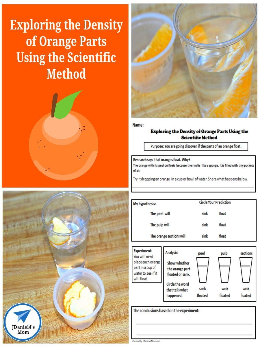 Exploring The Density Of Orange Parts Using The Scientific Method Scientific Method Scientific Method Experiments Scientific Method Activities