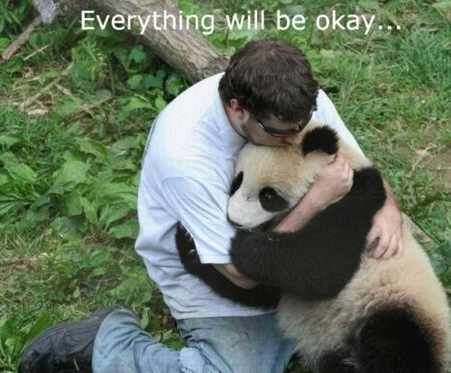 panda hug - best thing ever.