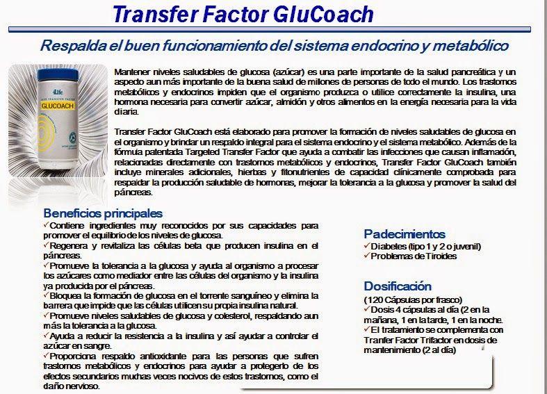 diabetes del glucoach del factor de transferencia