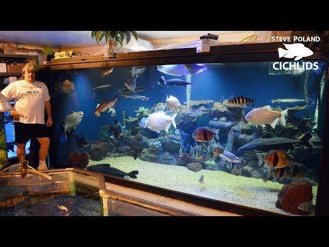 Big Tanks Big Fish And Big Rich Touring Ohio Fish Rescue