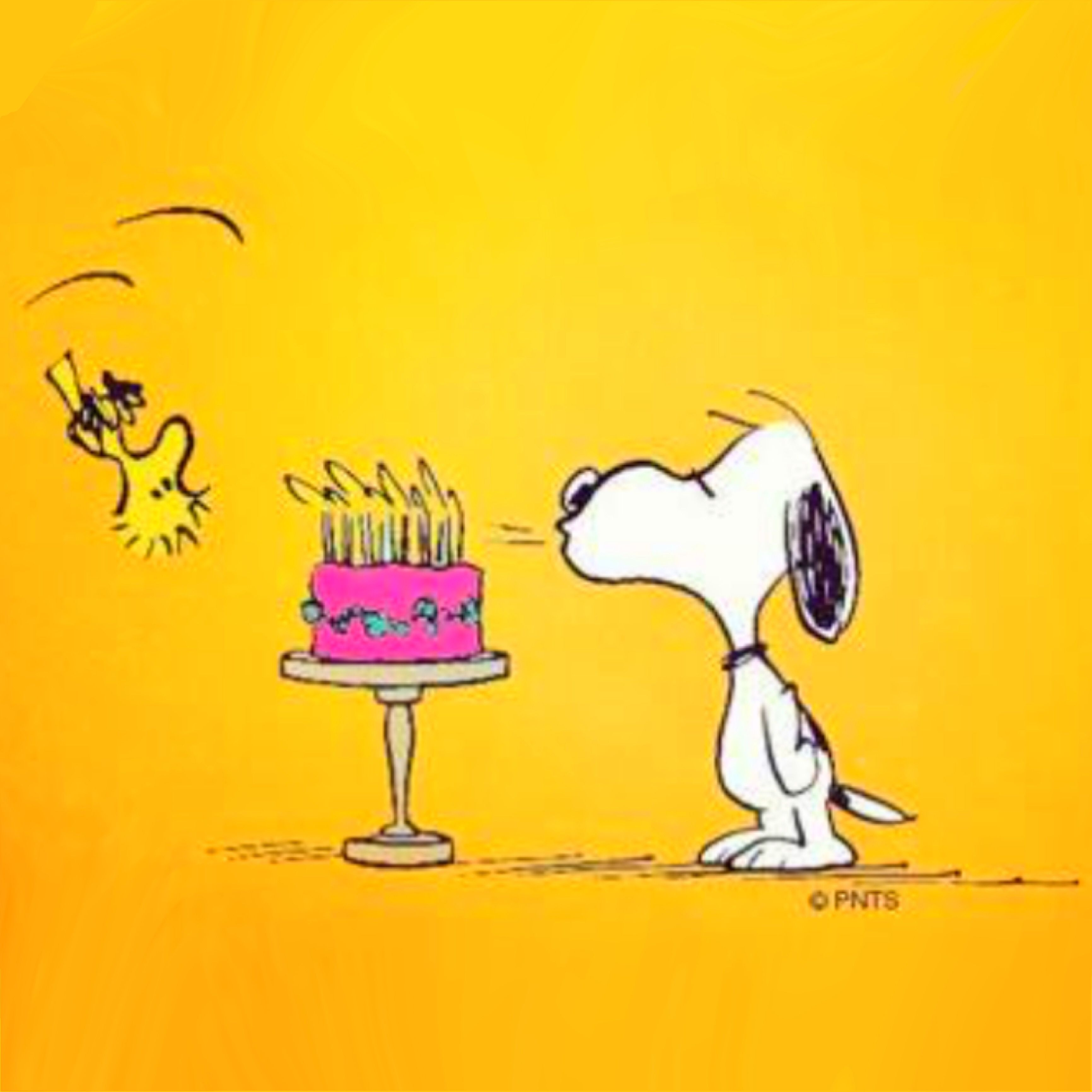 My Birthday Is April 1st When Is Yours Snoopy Birthday Snoopy Love Peanuts Happy Birthday