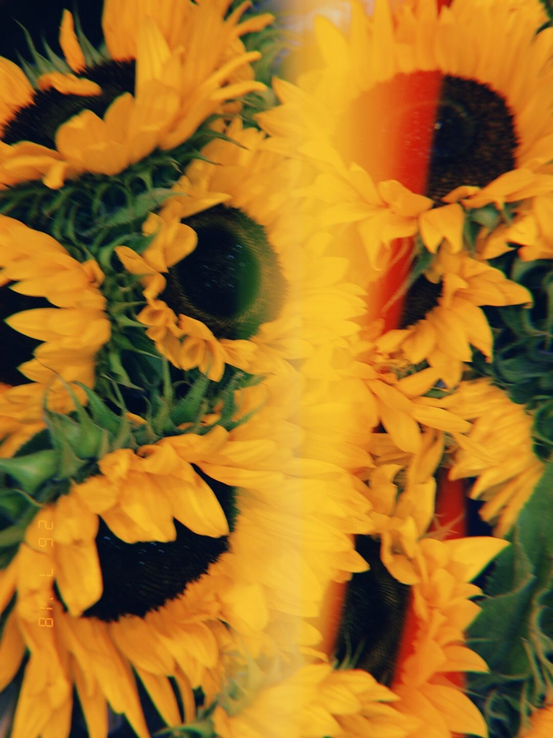 Yellow Aesthetic Image By Dayday On Pulls Out Camera