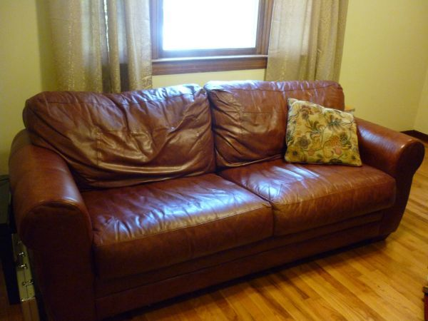 Sealy Leather Pull Out Sofa 125