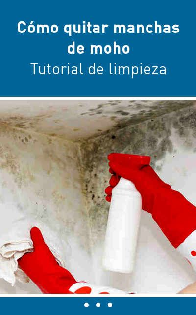 Cómo quitar manchas de moho. Tutorial de limpieza. | Pinterest ...