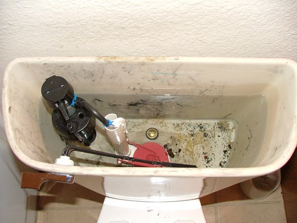 Know what causes your toilet tank to have rust, mold, or mineral ...
