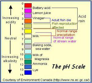 Understanding Ph Http Www Americanaquariumproducts Aquariumkh Html Freshwater