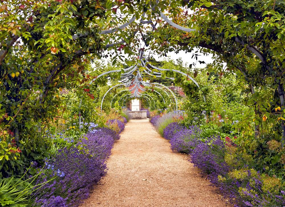 Module 2 Garden Design Process New Skills Academy Summer Flowers Garden Luxury Garden Garden Calendar
