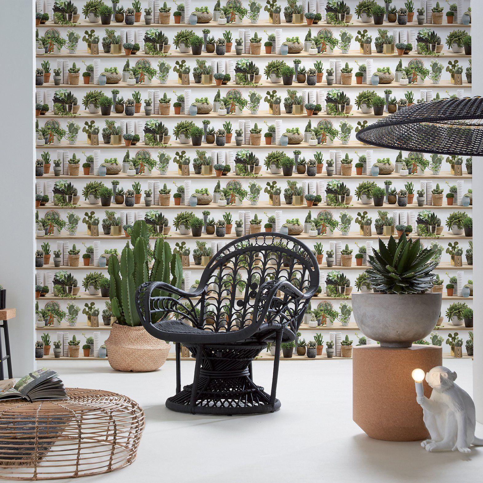 Du Papier Peint Imprime Cactus Sur Etagere En Bois Pour Une