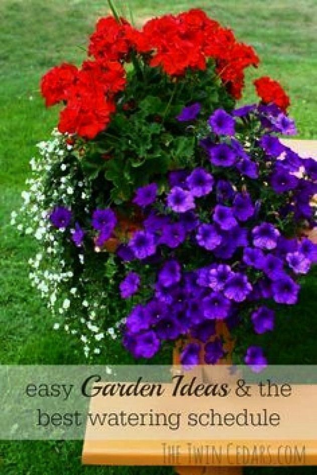 garden care schedule garden care schedule care schedule garden care schedule garden care schedule Easy Garden Ideas amp watering schedule Perfect potted plant combination...