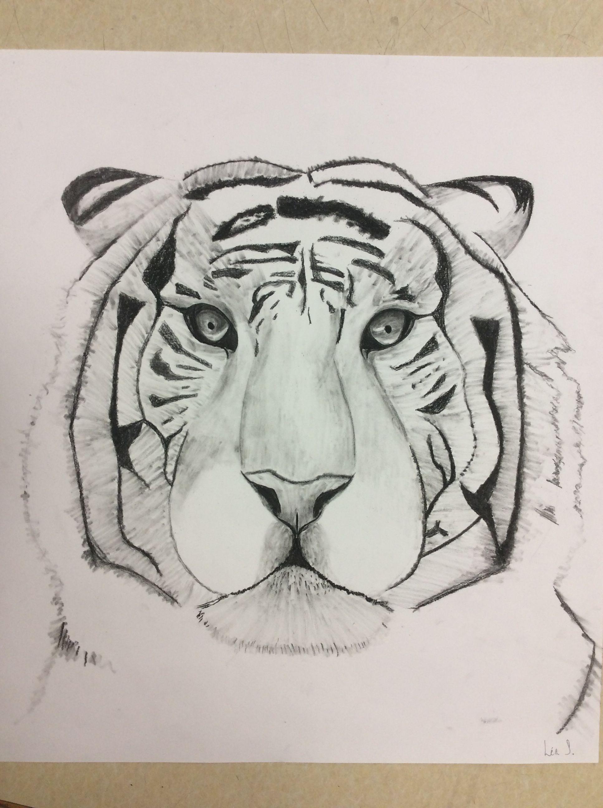 Dessin D Un Tigre Realiste Au Fusain Dessin In 2018 Pinterest Art