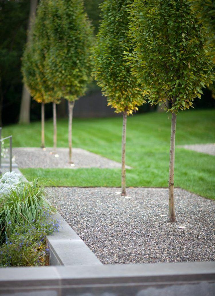Gartengestaltung Bäume Garten Pflanzen Modern Design
