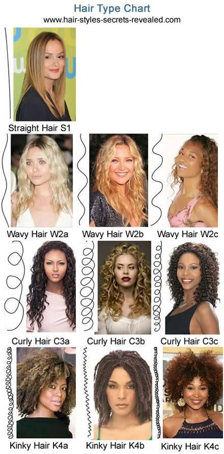 Pin by Emma Wattar on Beauty Tips & tricks | Hair type chart ...
