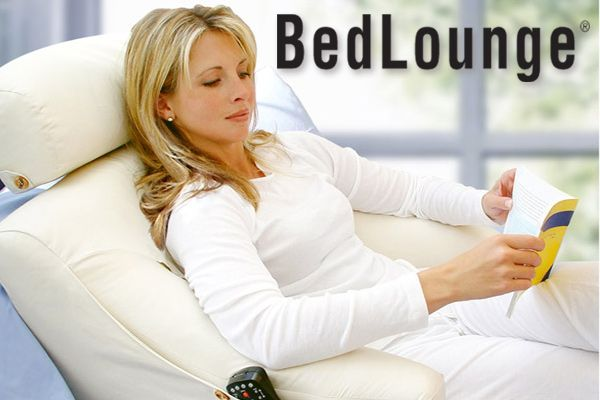 The Bedlounge Back Support Pillow Back Support Pillow