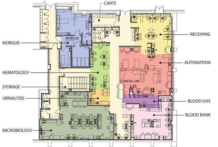 Resultado De Imagen De Clinical Laboratory Plan Labs Plan Color
