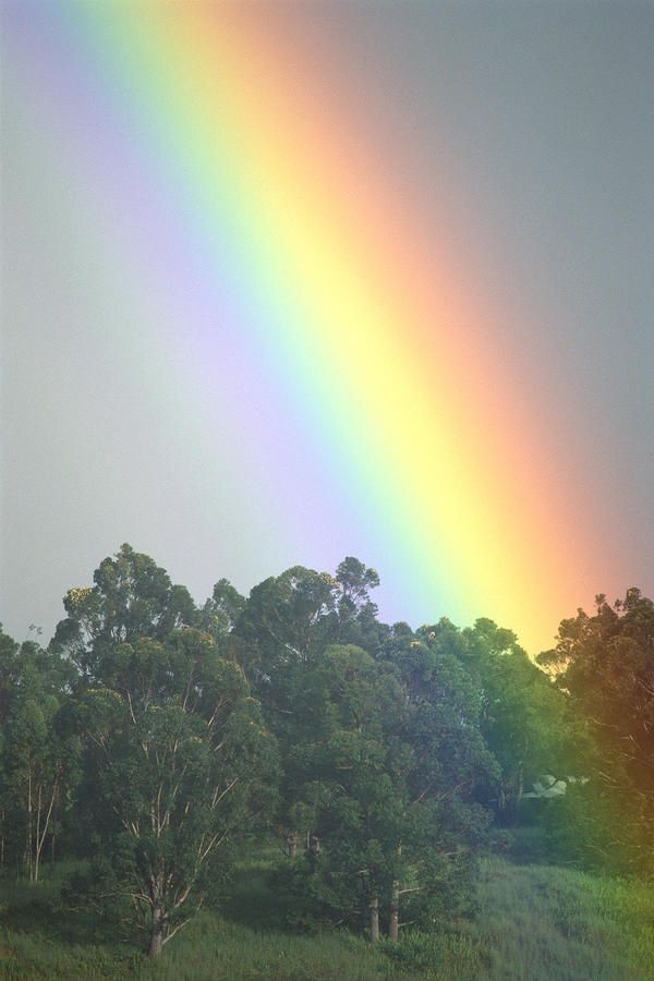 Rainbows Are Of Course The Infinite Symbol Of Hope And Prosperity