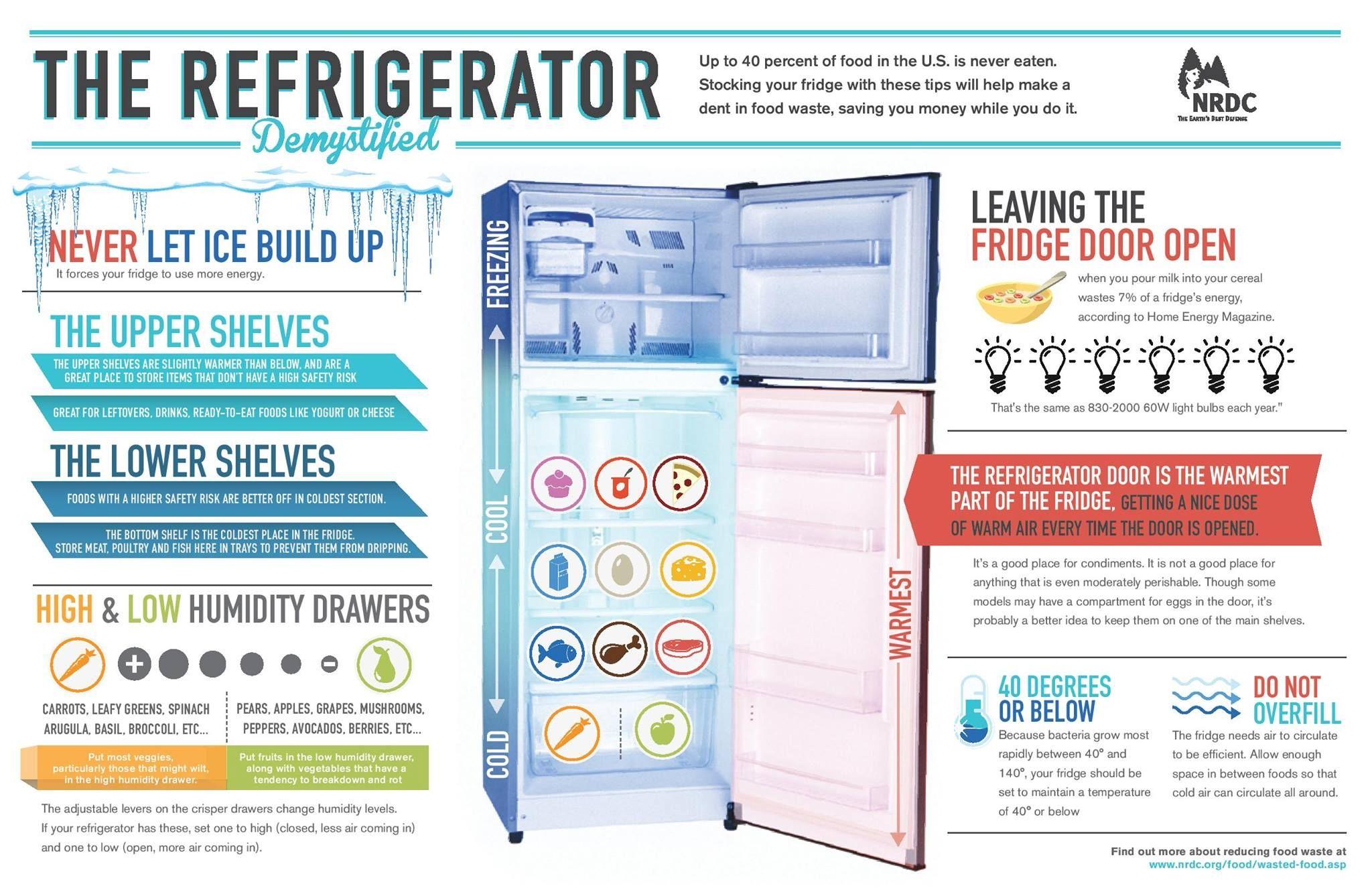 Refrigerator Demystified Preventing Food Waste Food