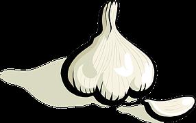 Garlic, Plant, Vegetable, Food