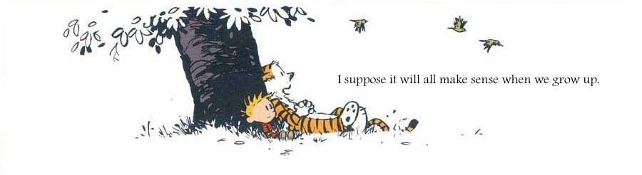 Calvin And Hobbs I Suppose It Will All Make Sense When We Grow Up