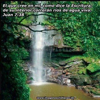 Imagenes Biblicas Rios De Agua Viva Places To Visit Pinterest