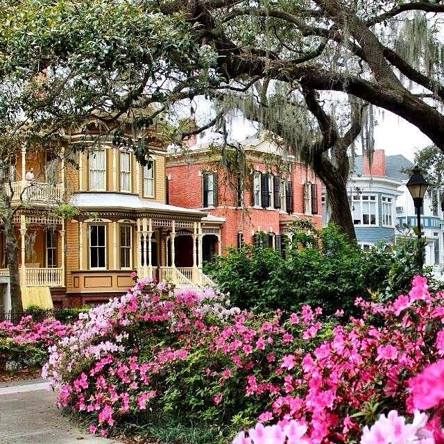 Relaxing Places To Visit In Georgia: We Like Some Pink With Our Green... You? #Savannah