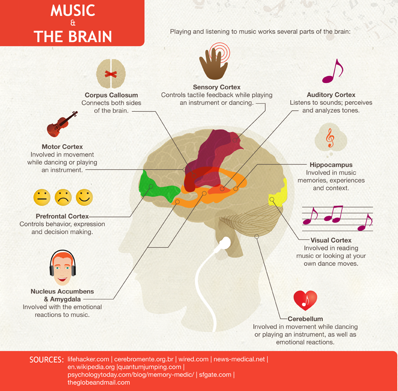 15 Studied Effects of Classical Music on Your Brain ...
