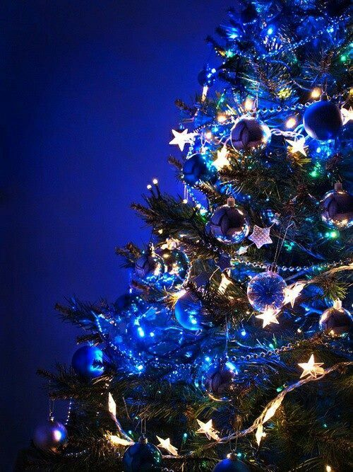 Blue Christmas La Vida es Azul - Azul es Vida Pinterest Blue